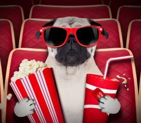 ТОП-10 фильмов, которые стоит посмотреть каждому